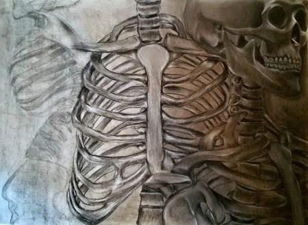 skeletondrawing